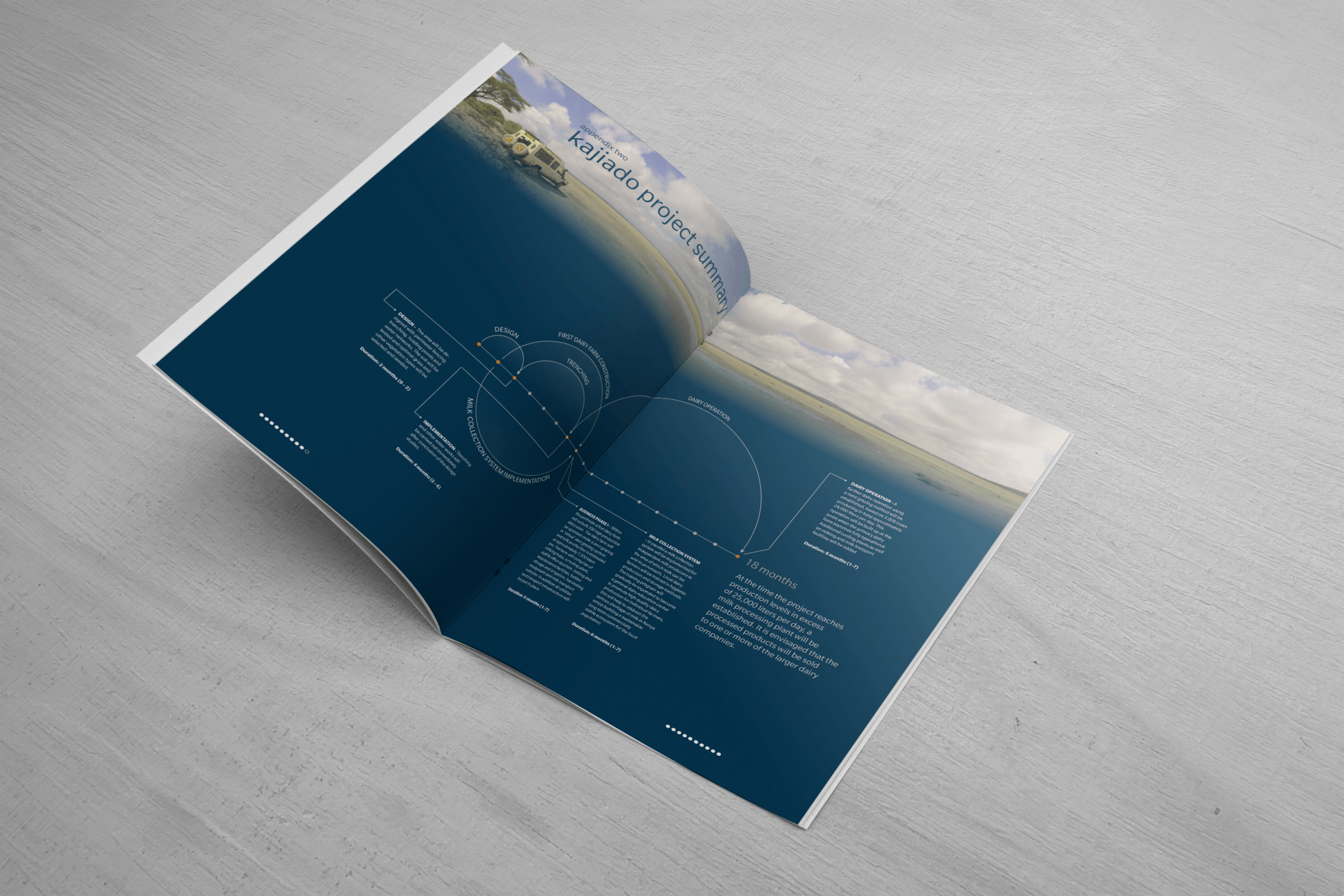 Investment Plan document design